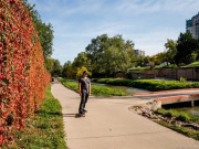 Image for Cherry Creek Trail