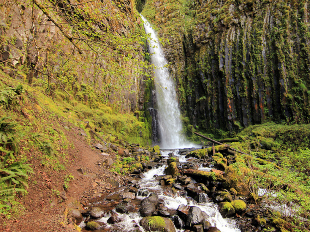 Dry Creek Falls rewards hikers with an unusual waterfall in the Columbia River Gorge.