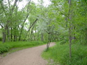 Image for Fountain Creek Regional Trail