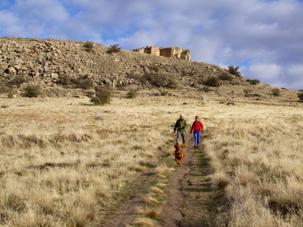Some of the Boise Foothill Trails are conducive for trail running for both you and the dog.