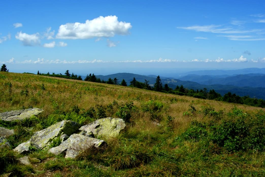 Just 25 miles from downtown Johnson City, the Roan Highlands of Tennessee offer some of the best views along the entire Appalachian Trail