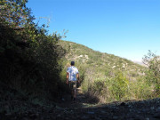 Image for World of Chaparral Trail—Angeles National Forest