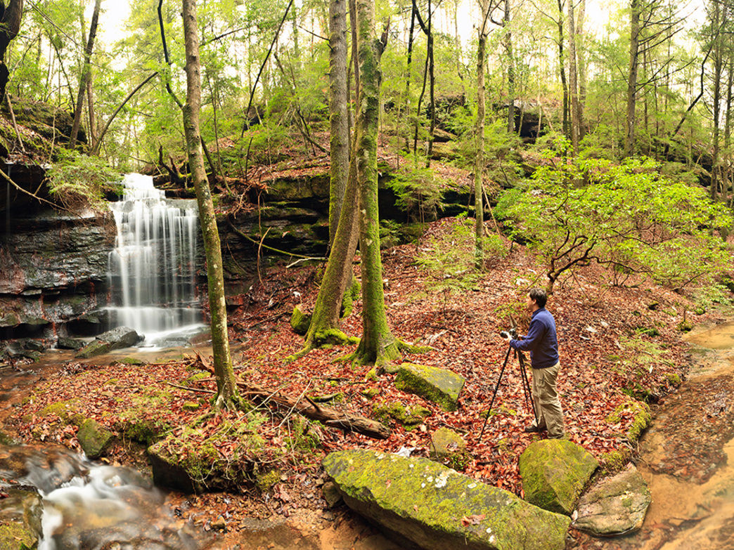 This rich ecosystem draws plenty of visitors during Alabama's peak hiking and camping seasons.