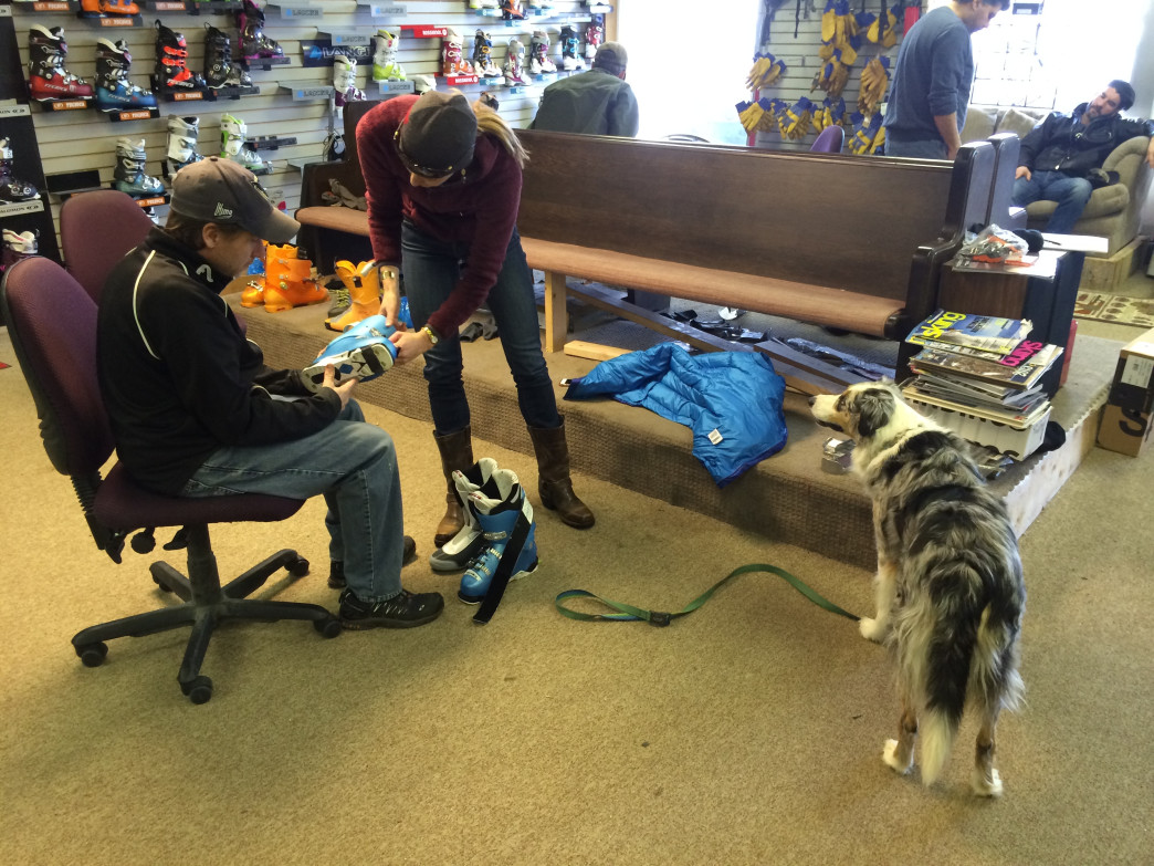 Dogs are welcome at Larry's Bootfitting