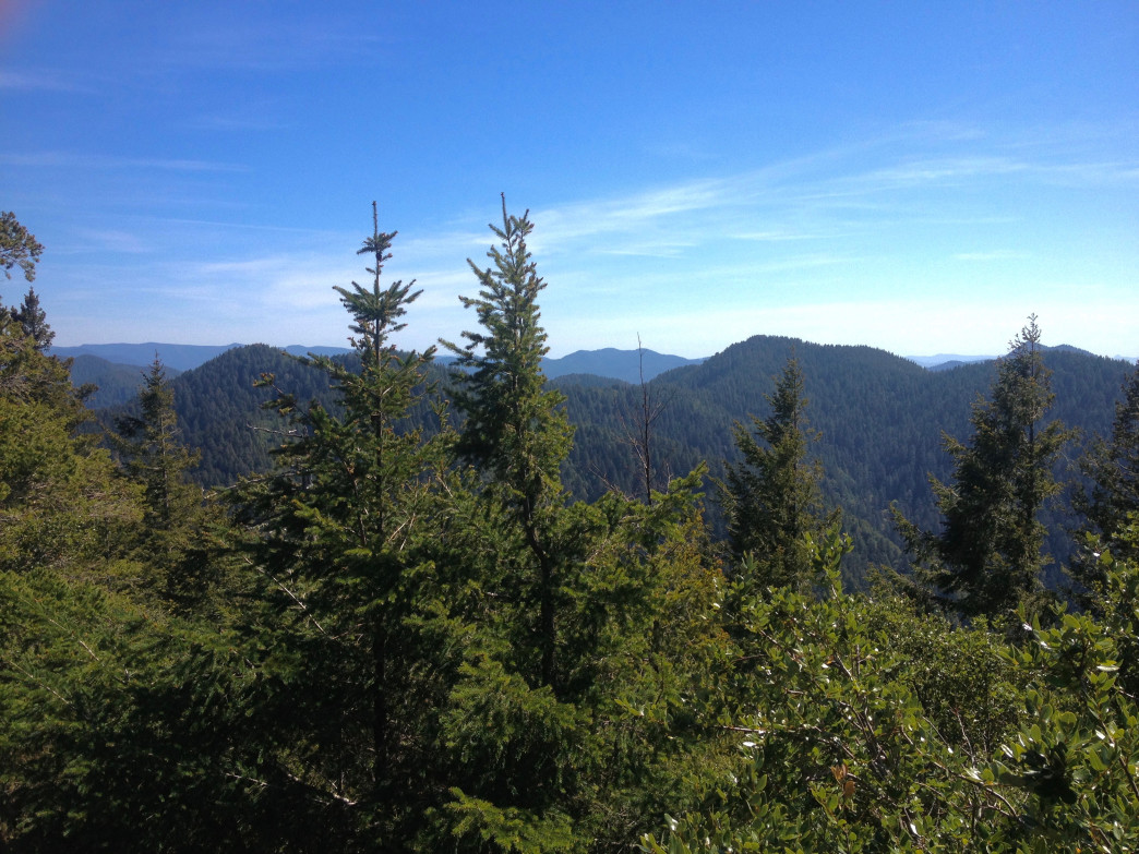 Looking southeast over the far northern Klamaths from the Grassy Knob summit.