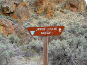 Image for Juniper Canyon in Leslie Gulch
