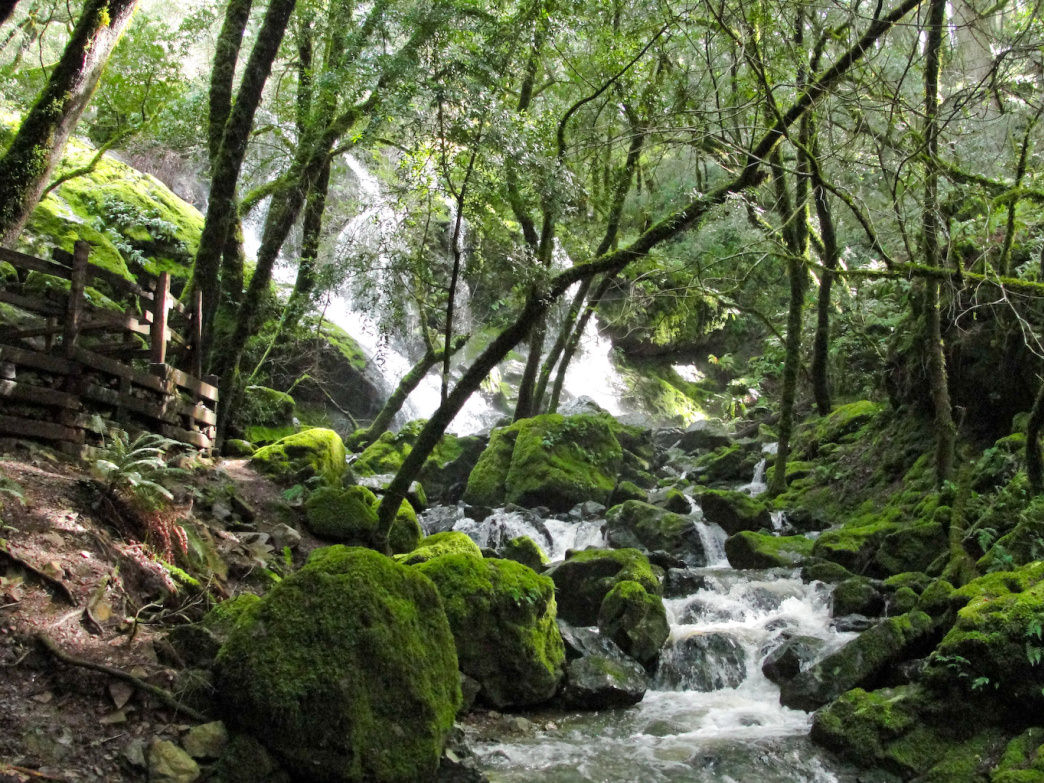 Get views of waterfalls and the Pacific Ocean on the 7.7-mile trail to Cataract Falls.