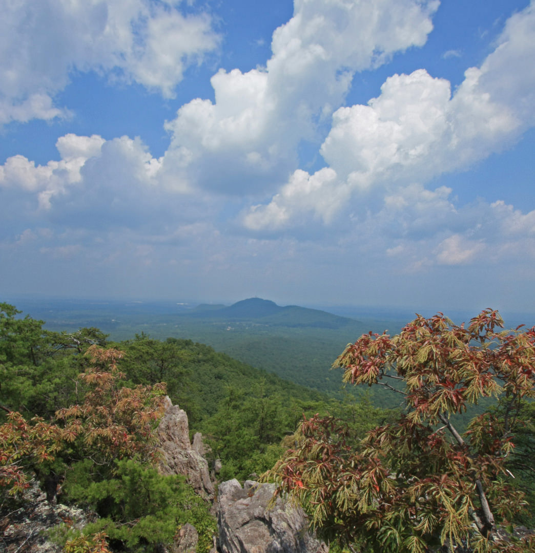 Crowders Mountain State Park is home to some amazing views.     Alan Cressler