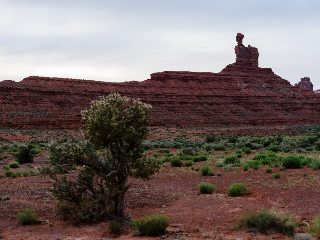 One of the many tall, red, sandstone structures found in the Valley of the Gods.