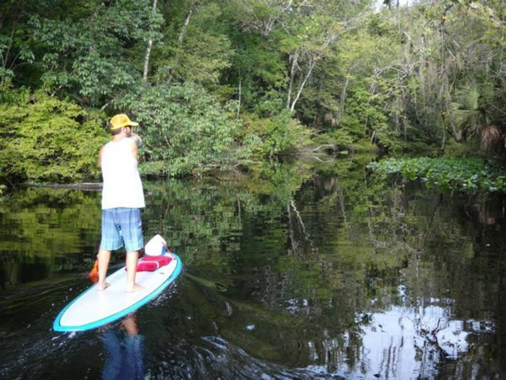Paddling the SUP down the Wekiva River