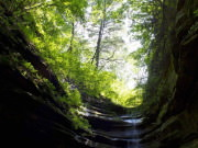 Image for Starved Rock State Park - Backpacking/Camping