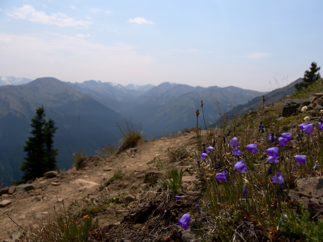 The trail from Deer Park to Maiden Peak and Hurricane Ridge in Olympic National Park