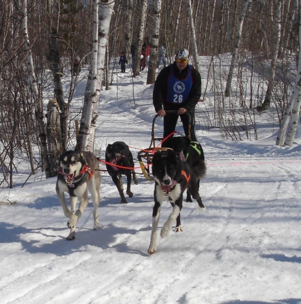Endurance Kennels offers moonlight tours and the chance to drive your own team.