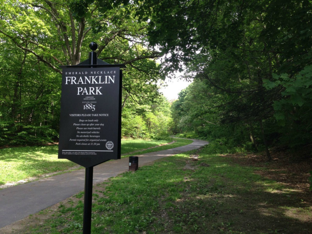 The Wilderness At Franklin Park Trail Running