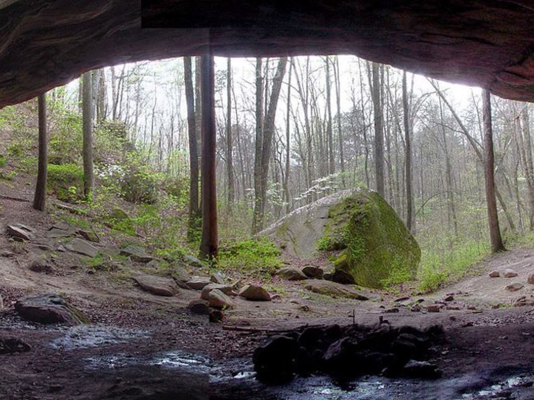 A view from inside the massive Kinlock Shelter in the Bankhead National Forest.