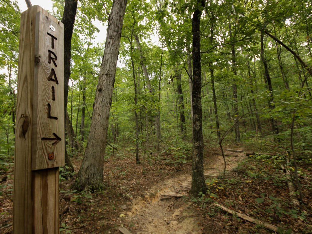 Take the same steps of Daniel Boone up to the panoramic Kentucky views.