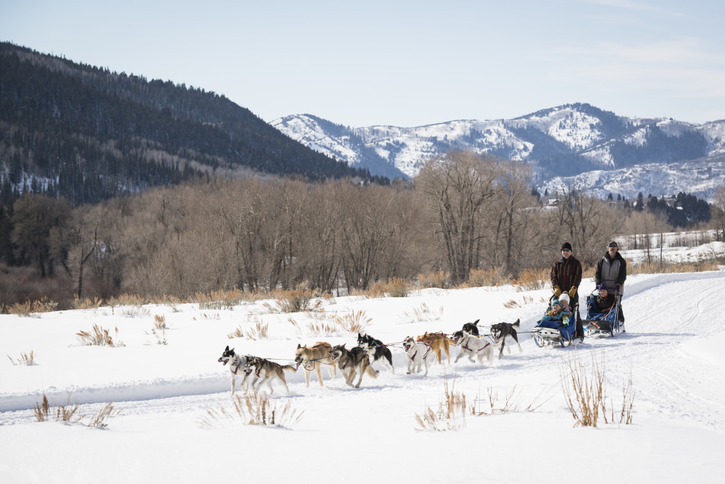 Dog-sledding is an experience your kids will never forget.