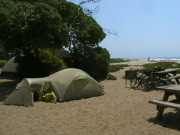 Image for Carpinteria State Beach Campground