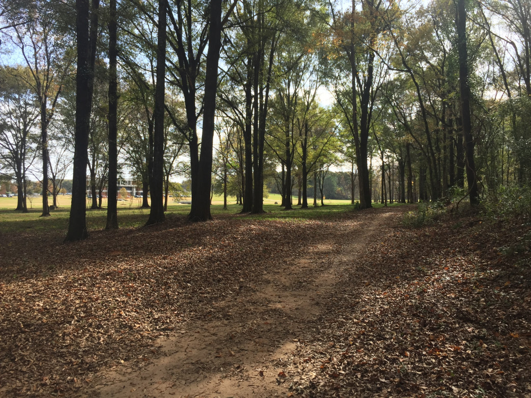 One of the few hiking trails within Montgomery