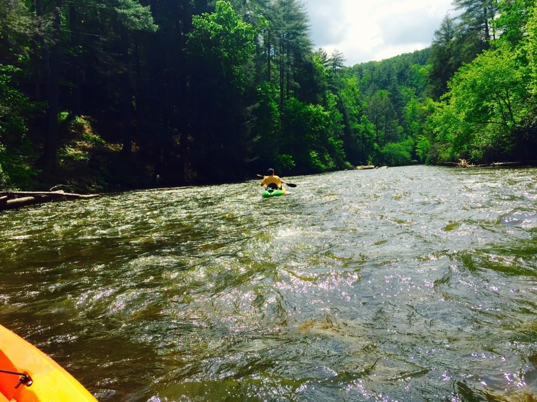 Enjoy a trip  deep into the Chattahoochee National Forest as you paddle down the Toccoa River.
