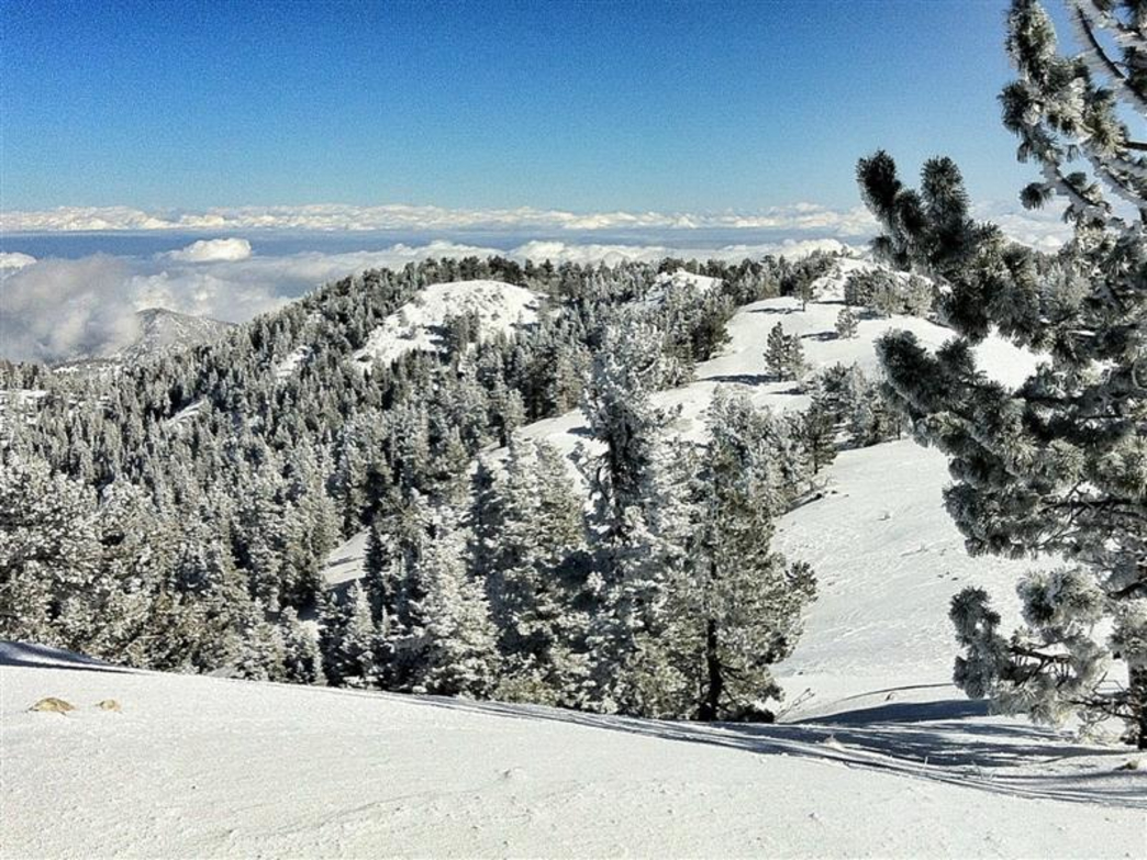 Mount Pinos - Skiing | RootsRated