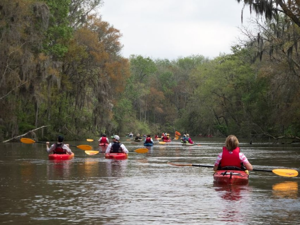 The Altamaha River is home to more than 135 endangered species and plants.