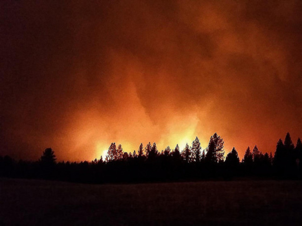 The Grizzly Bear Complex Fire, pictured here, is just one of many big wildfires going on in the state right now.