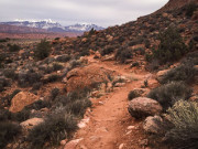 Image for Pipe Dream Mountain Biking Trail