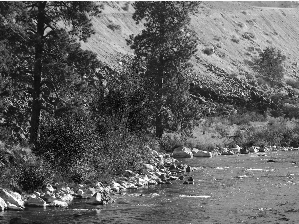 South fork of the boise river white water paddling for Boise river fishing