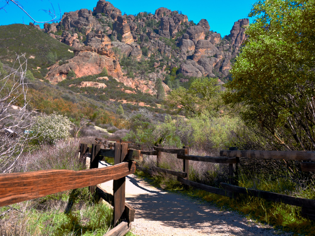 Along the trails of Pinnacles National Park.