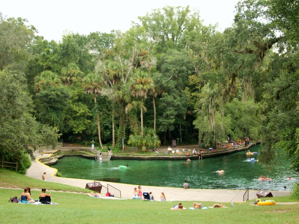 About 20 miles from Orlando, Wekiwa Springs State Park features crystal-clear water for swimming.