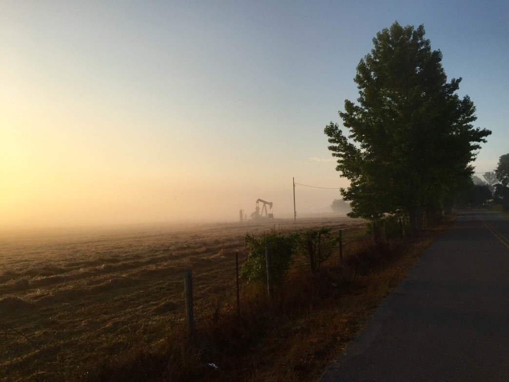 A fog-drenched sunrise on Sanders Ferry Road near  Tuscaloosa