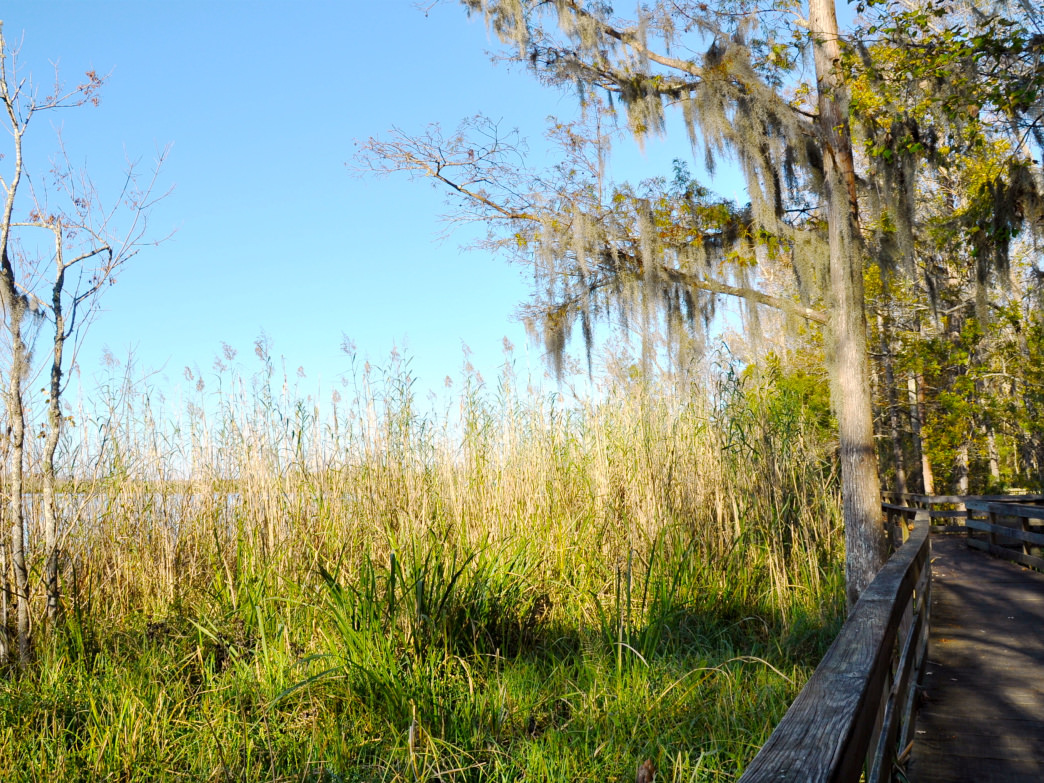Alabama's historic Blakeley State Park was the site of the last major battle of the Civil War.