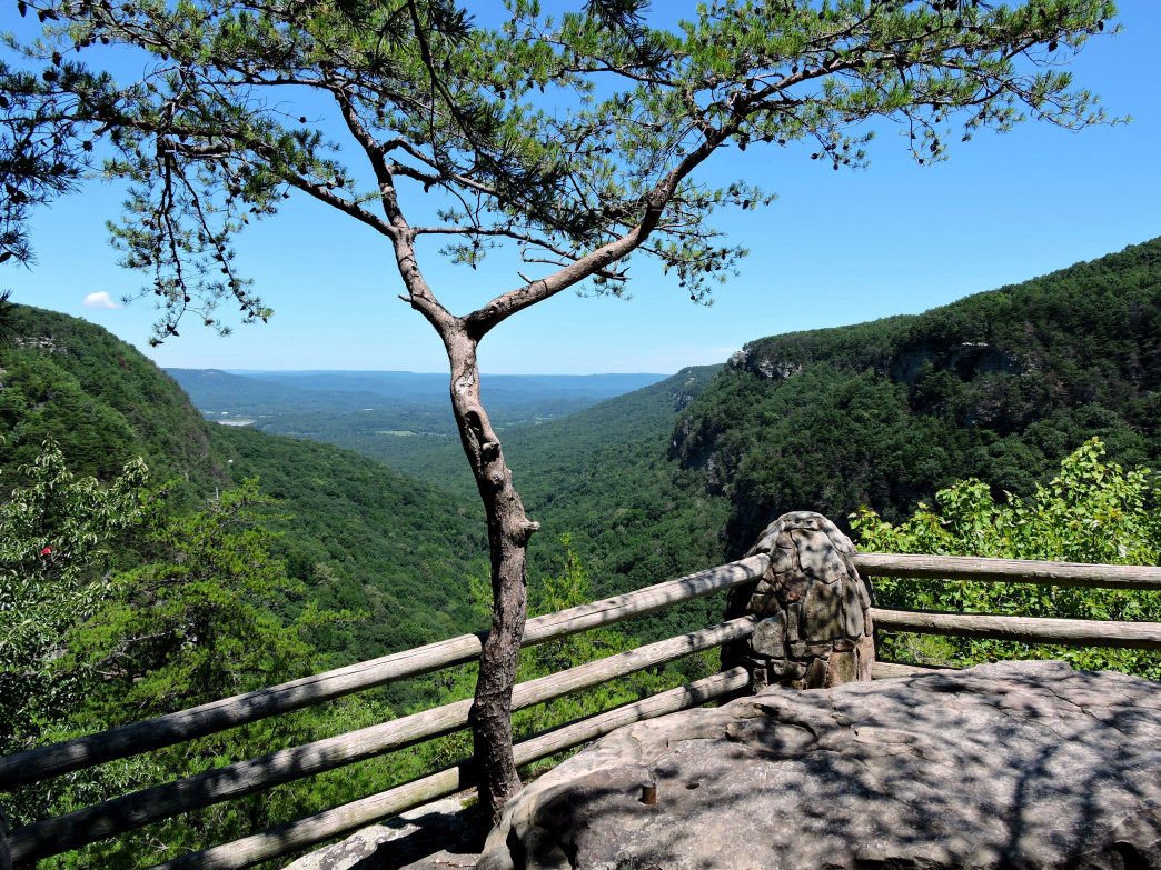 Cloudland Canyon State Park features a 4.8-mile loop trail with multiple scenic outlooks.