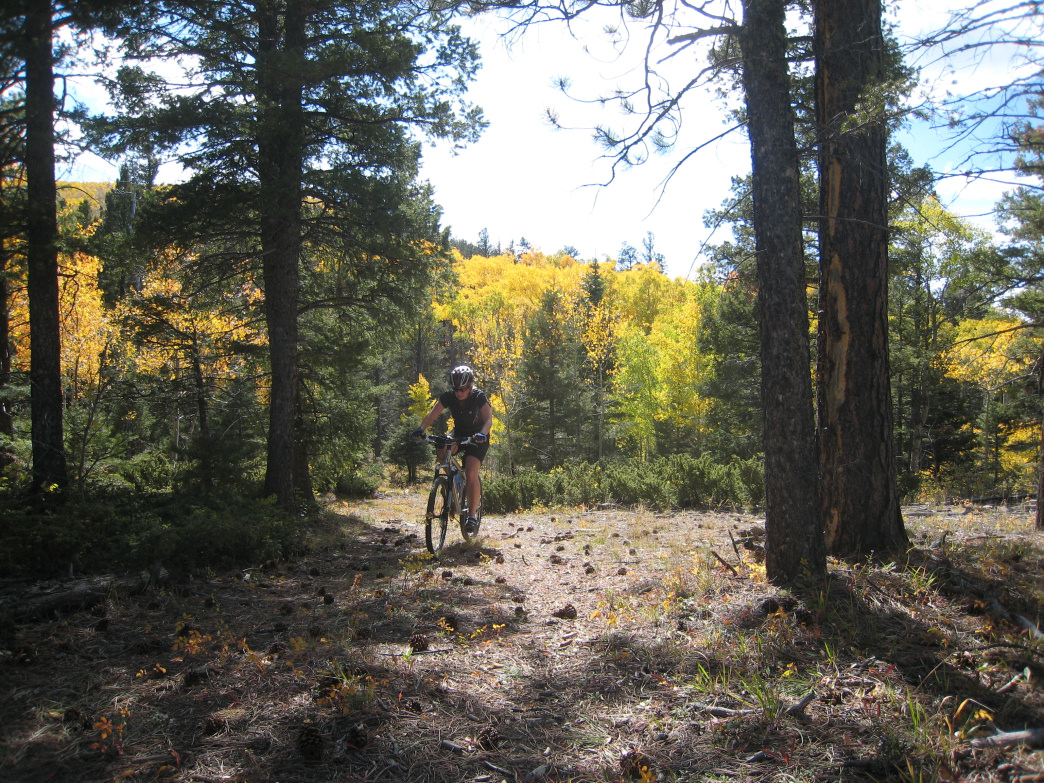 Stone Mountain Trail Elevation Gain : Must ride mountain bike trails in the us osprey packs