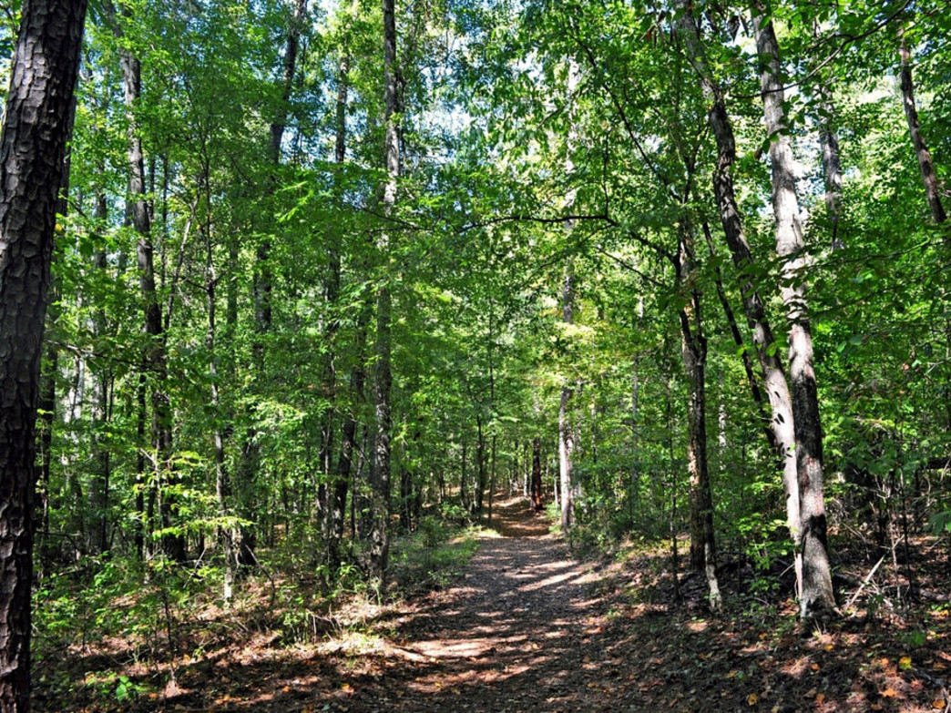 Paul Grist State Park features nearly 20 miles of hiking trails.