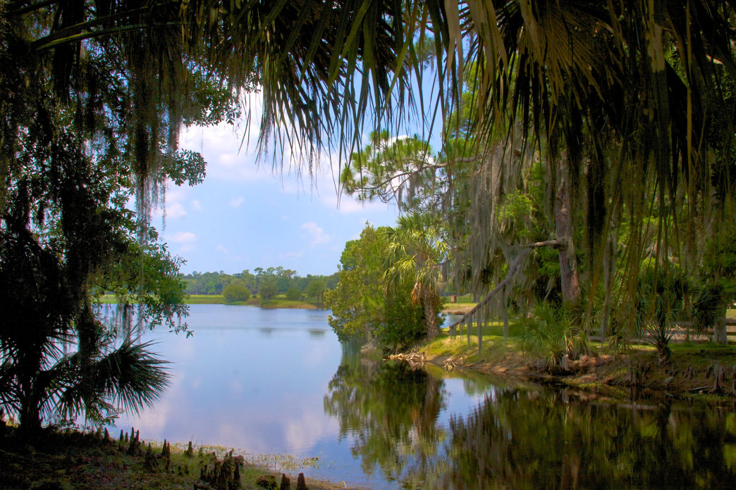 Lake Hatchineha is one of the Kissimmee Chain of Lakes that draws anglers from all over the country.
