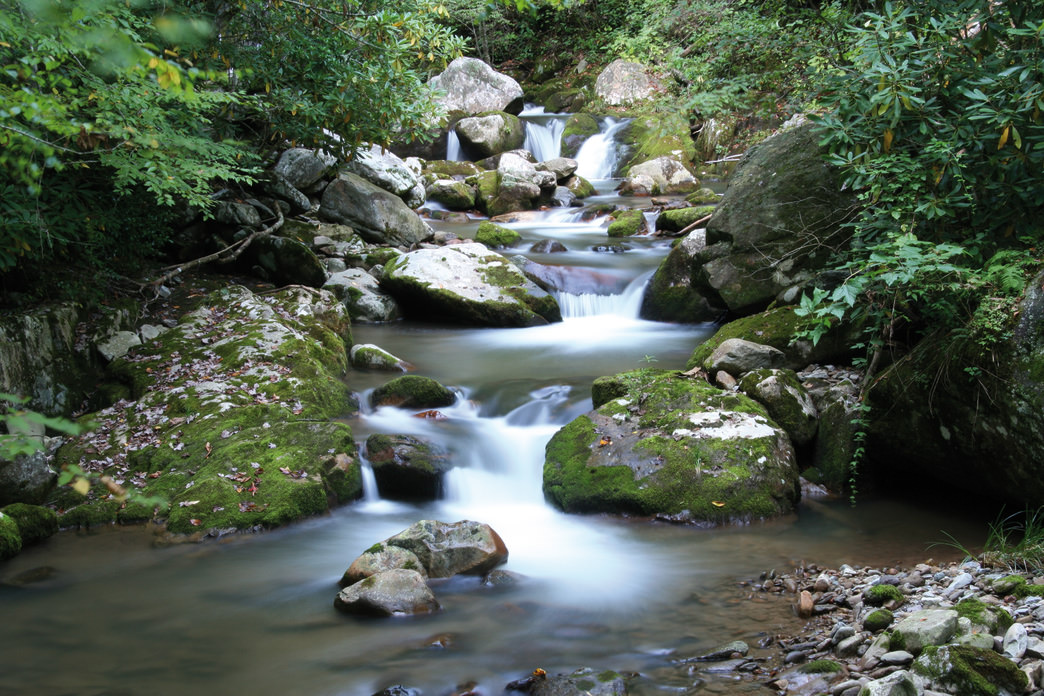 The Southern Appalachian Highlands Conservancy has preserved the Asheville and Weaverville watersheds.