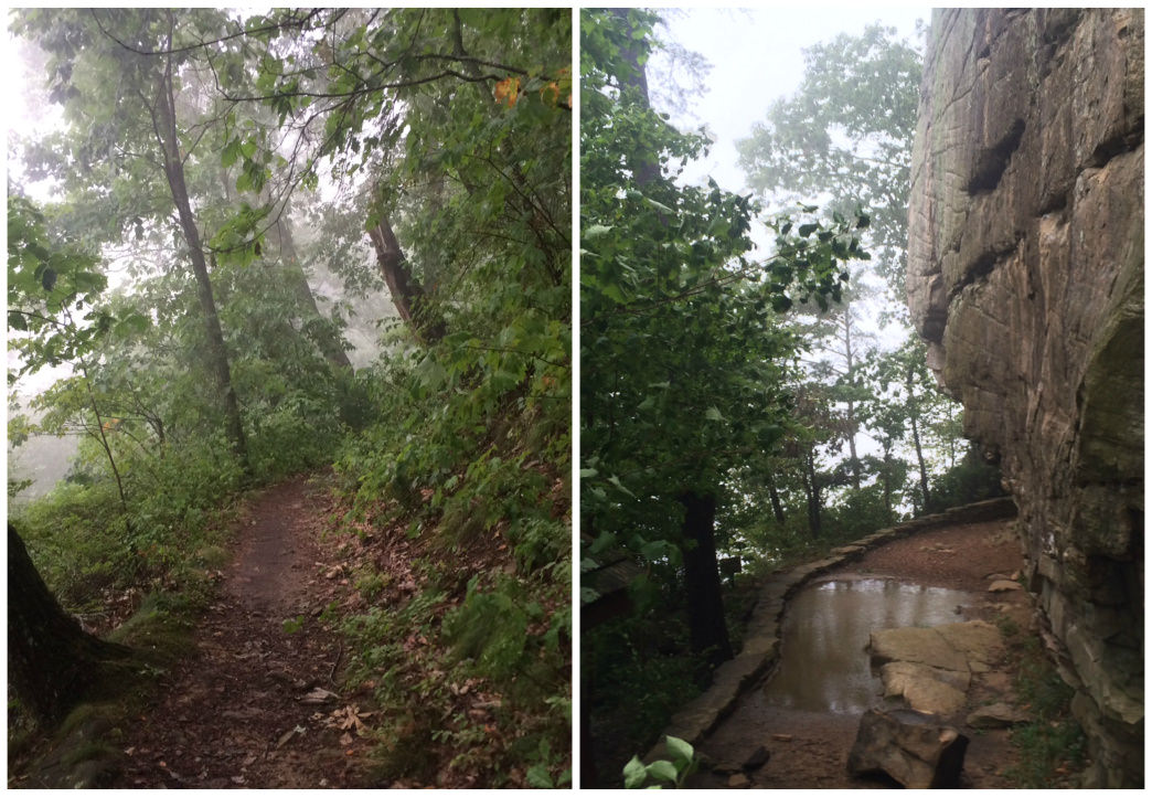 A rain-soaked trail on Day 23 of the Gum Springs.
