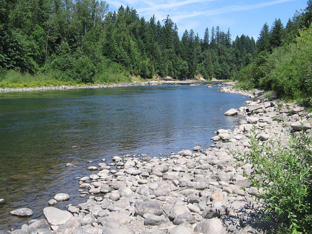 The slow pace of the Clackamas River makes it a popular destination for floating.