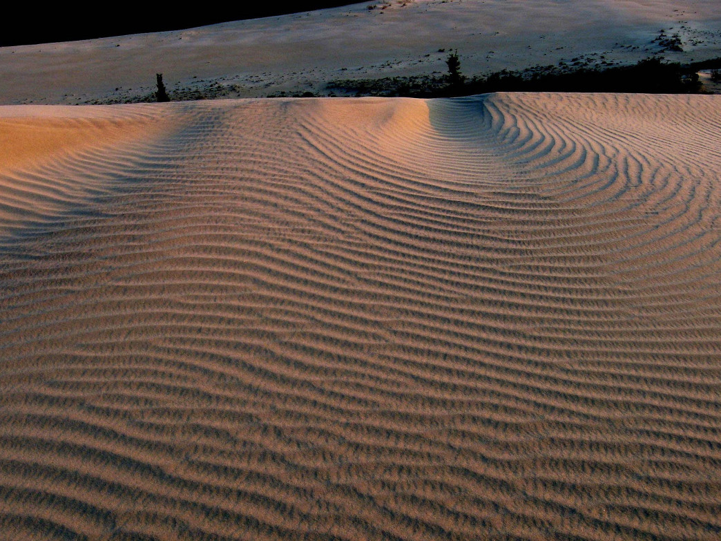Close up of the sand dunes.