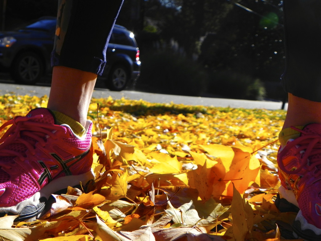 Enjoy the fall colors at these amazing places for a trail run.