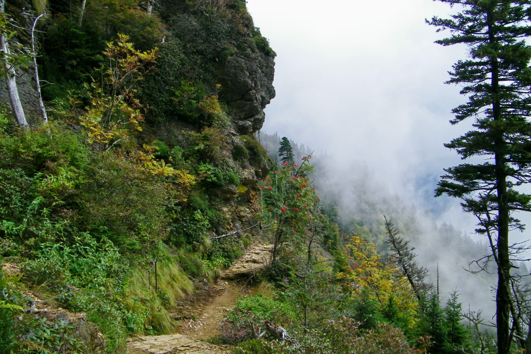 Hike to the third-highest point in Great Smoky Mountains National Park on this classic trek.