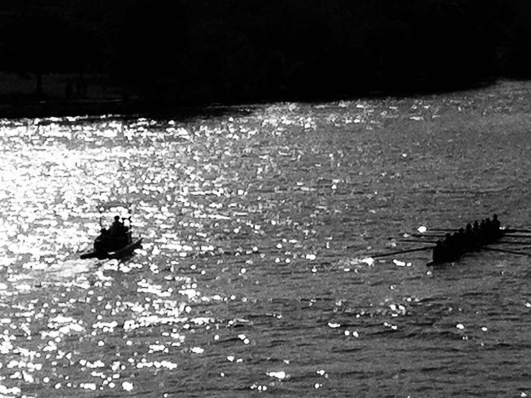 Rowing on Lady Bird Lake
