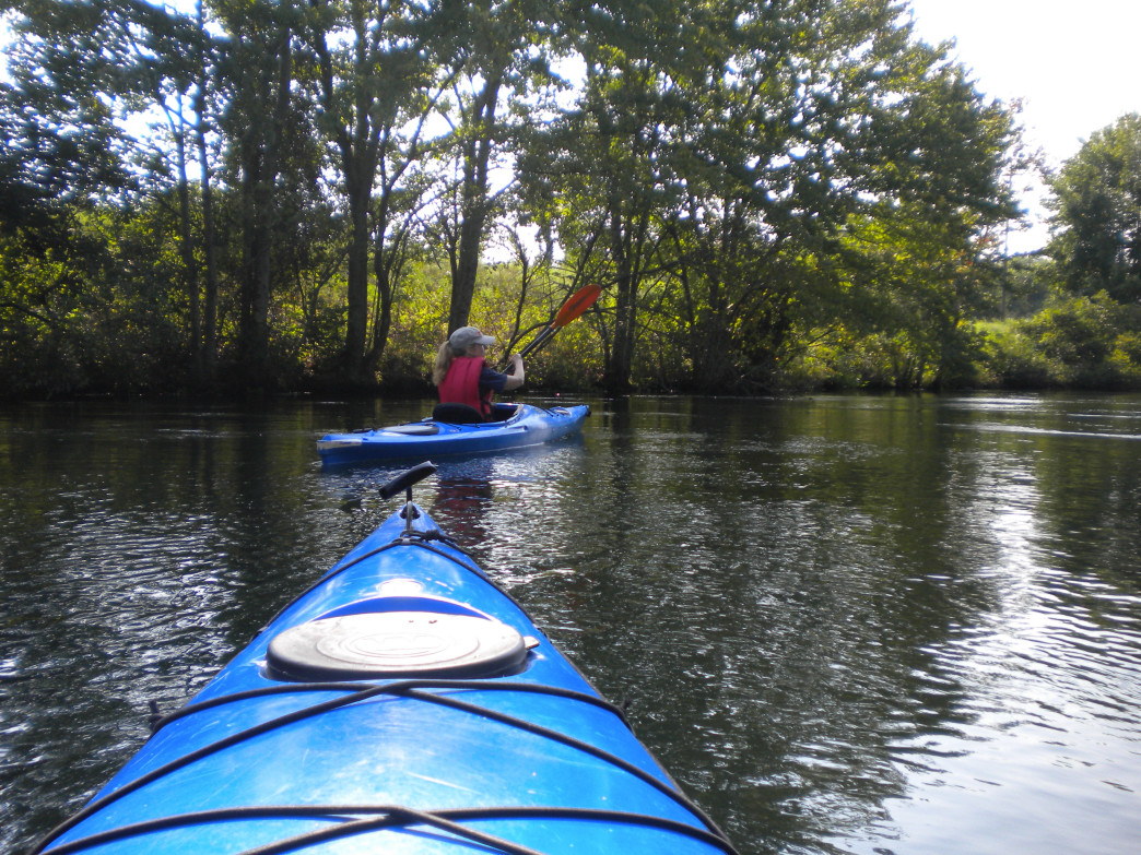 Kayaking on the Savannah River