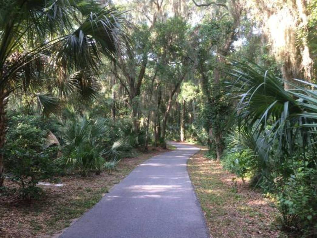 A portion of Sea Pines' extensive bike path system