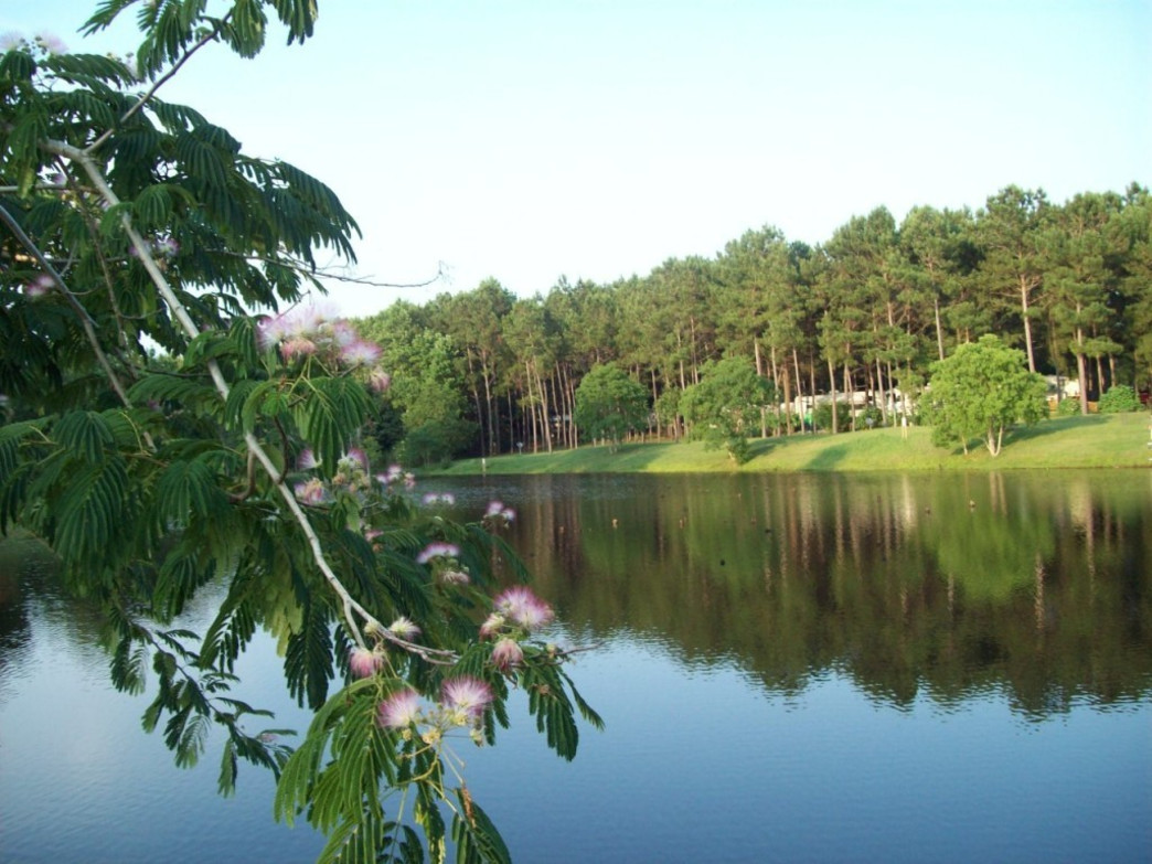 A two acre fishing lake provides hours of entertainment as well as a scenic view from your campsite at Elberta's Jellystone Park.
