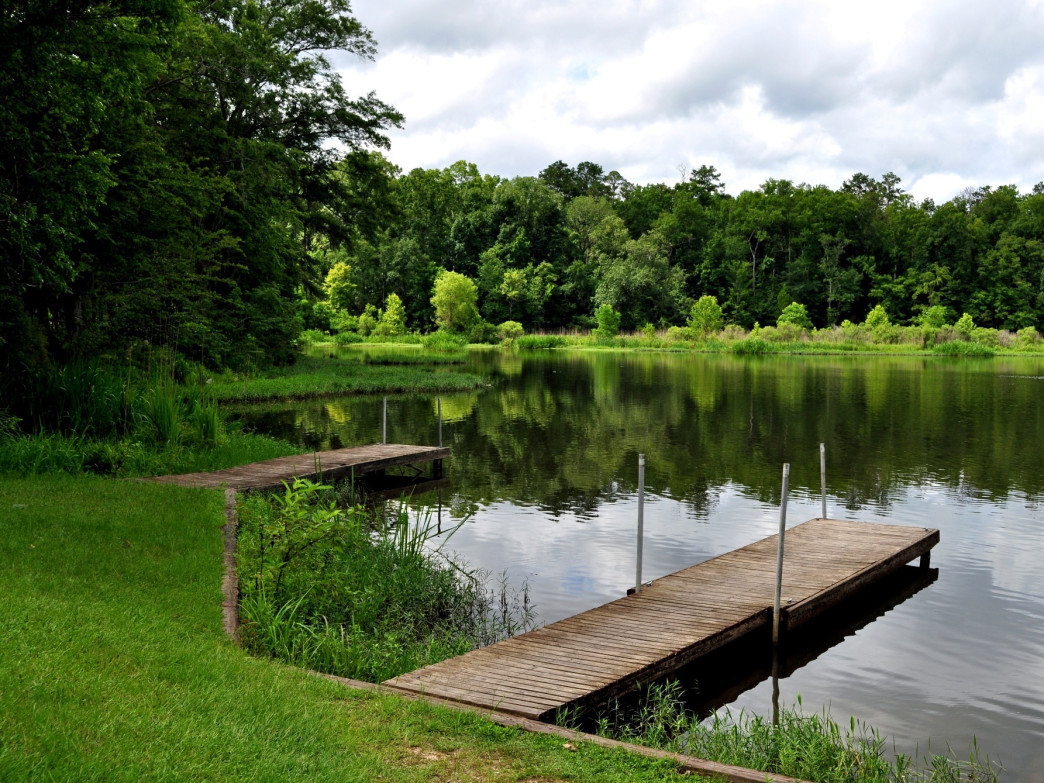 Roland Cooper State Park offers 60 campsites.