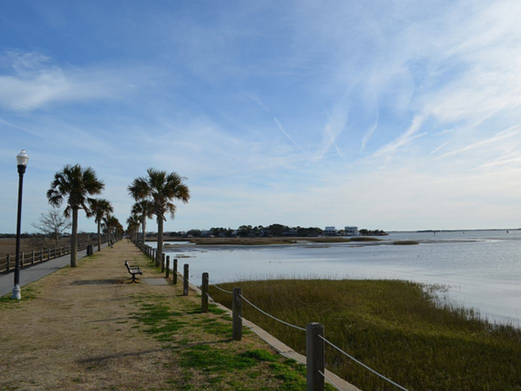 Pitt Street Bridge is a cross  between a pier and a park, with great views of the harbor.