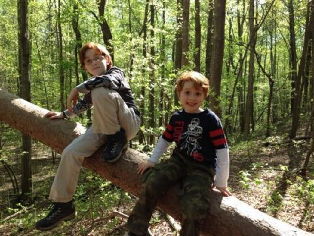5 family friendly summer adventures in charlotte